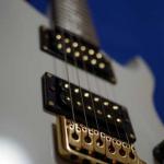 エレキギター PRS SE Dave Navarro Signature Modelのレビュー